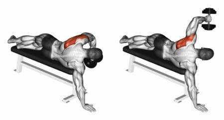 効きにくいリア(三角筋後部)に効く最高のトレーニングをご紹介! | BarbellAce